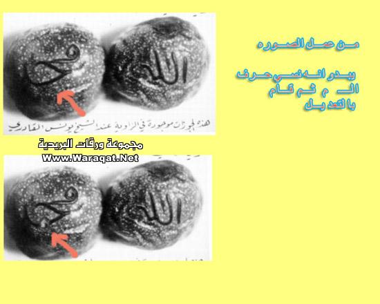 بعض الاكاذيب المنتشرة على الانترنت picture_1551996821_443.jpg