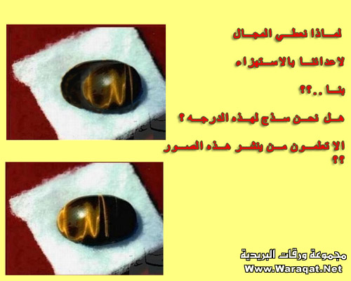 بعض الاكاذيب المنتشرة على الانترنت picture_1551996821_636.jpg