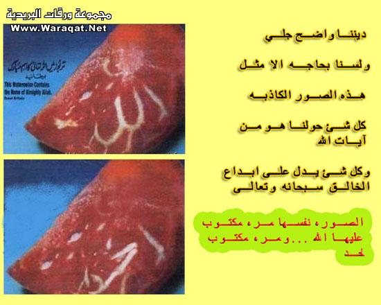 بعض الاكاذيب المنتشرة على الانترنت picture_1551996823_900.jpg